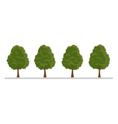 Set of city tree bush hedge decoration elements vector