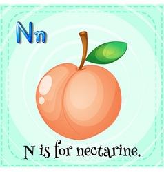 Nectarine vector image