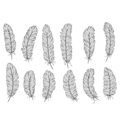 Light gray isolated fluffy bird feathers vector