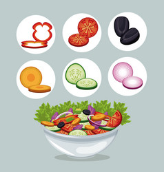 Bowl salad vegetables appetizer dinner vector
