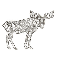 deer coloring for adults vector image vector image