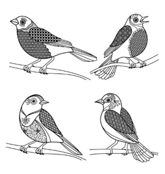 Hand drawn zentangle birds vector image vector image