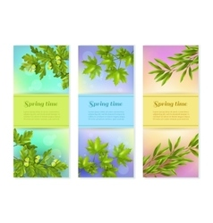 Three Vertical Branch Banners vector image vector image