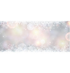 Winter banner with snowflakes vector image vector image