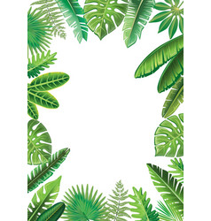 frame from tropical leaves vector image