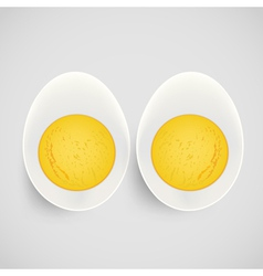 boiled egg with yolk vector image