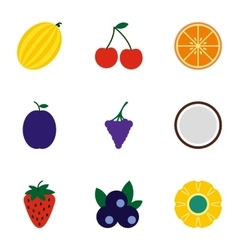 Types of fruit icons set flat style vector