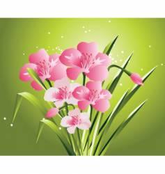 flowers illustration vector image