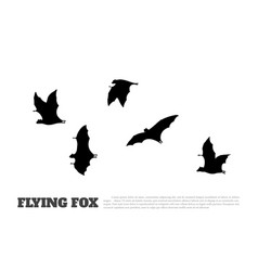 black silhouette of a japanese flying fox vector image vector image
