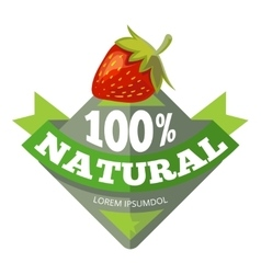 Organic natural fruits logo label badge vector image vector image