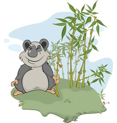 Panda and bamboo wood vector image vector image