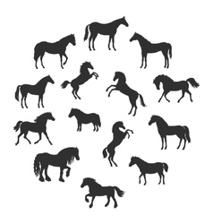 Set of silhouettes of horses breeds vector