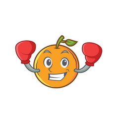 Boxing orange fruit cartoon character vector