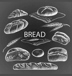 bread items collection hand drawn on vector image vector image