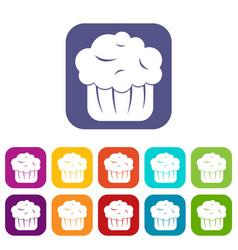 Cupcake icons set vector