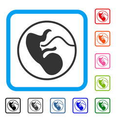 Prenatal framed icon vector