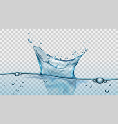 water splash with droplets and bubbles on vector image