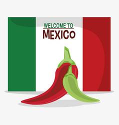 welcome to mexico flag national vector image