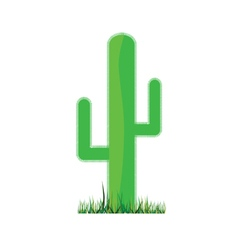 cactus green vector image