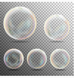 Realistic soap bubbles on transparent background vector
