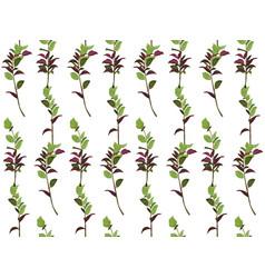 Seamless pattern ruscus salal tree green burgundy vector