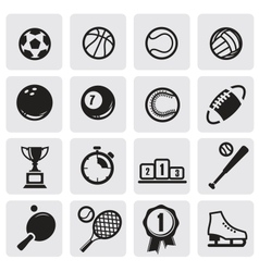 set sports vector image vector image