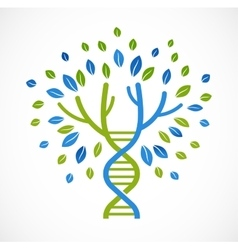 Dna genetic icon - tree with green leaves vector