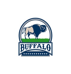 American Bison Buffallo Banner Circle Woodcut vector image