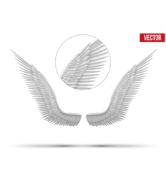 White open angel wings vector image