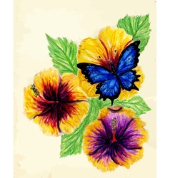 Painted Hibiscus vector image