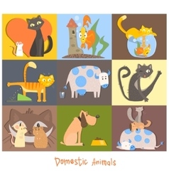 Cute pets cats dogs and their actions emotions vector
