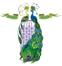 Couple peacocks ribbon with text green design vector