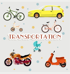 Various types of transport vector
