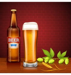 Beer Design Concept With Bottle And Glass vector image vector image