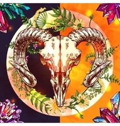 sketch animal sku vector image vector image