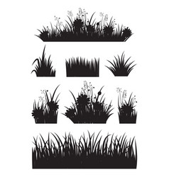 border set with grass and flower silhouette set vector image