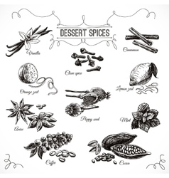 Hand drawn set with dessert spices vector
