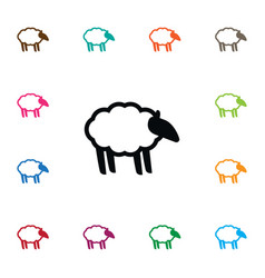 Isolated sheep icon ewe element can be vector