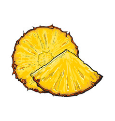 Unpeeled round and wedge cut pineapple slices vector