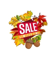 Autumn sale banner discount template vector