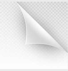 Curved corner of a white paper eps 10 vector