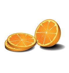 Fresh oranges fruits vector image