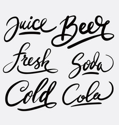 juice and beer hand written typography vector image