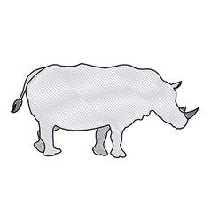 rhino wild animal africa exotic mammal vector image vector image