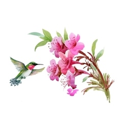 Watercolor wild exotic birds on flowers and twigs vector