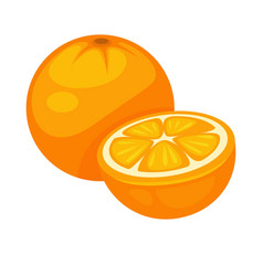 Orange tropical fruit whole and half isolated on vector