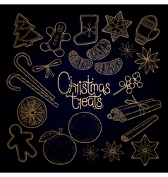 Graphic christmas treats vector image vector image