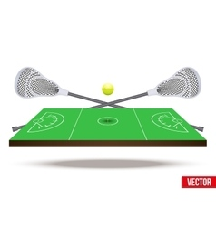 Symbol of lacrosse game on field vector image