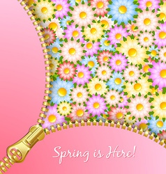 Spring zipper with flowers vector image