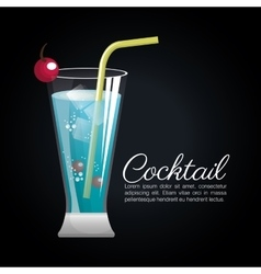 Cocktail tropical poster bar icon vector
